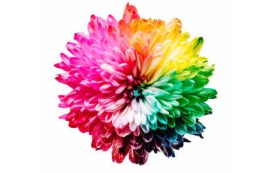 RGB, CMYK, Pantone ¿Cuál usamos?