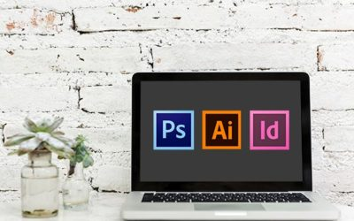 Photoshop, Illustrator or Indesign, which one do I use?
