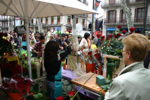 The celebration of Sant Jordi in Barcelona - PCG Barcelona