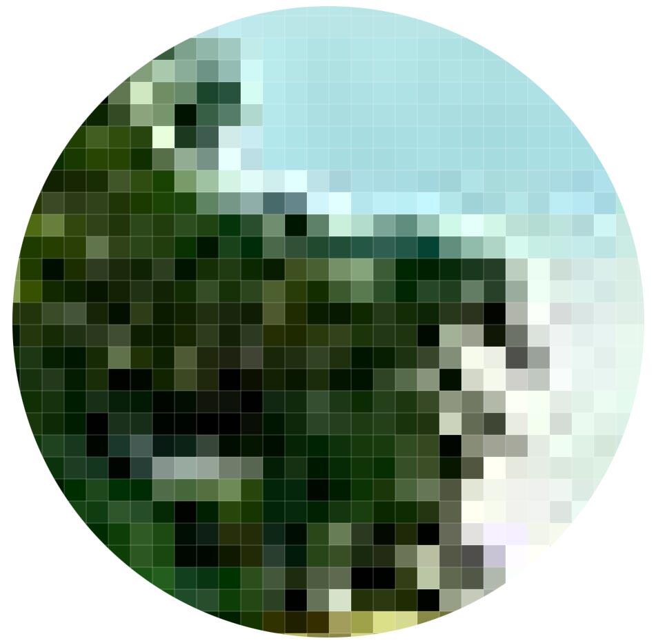 Imagen digital: Zoom de mapa de bits - PCG Barcelona
